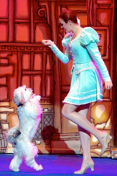 Ashleigh and Pudsey 9