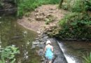 Things to do With Babies and Children in Central Bristol – Nightingale Valley