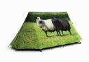 Cool and Quirky Tents for Summer Camping