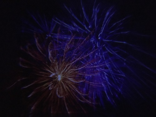 sensory lights firework lights gun