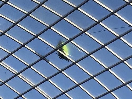 Cabot Circus Glass Roof Repair Bristol