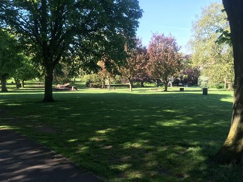 st andrews park Bristol trees
