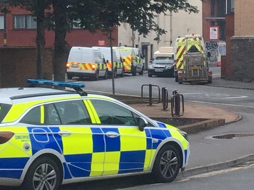 Bristol police cannabis bust