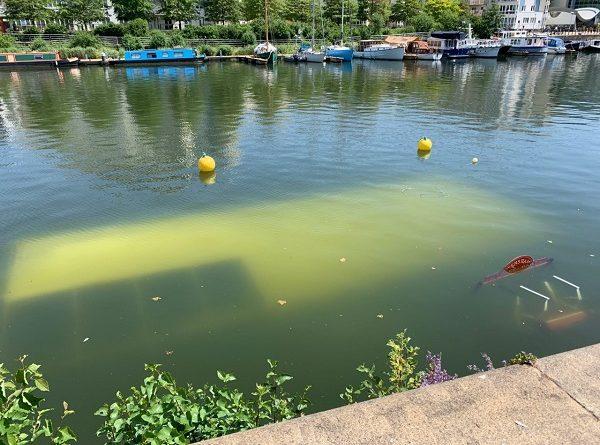 Redshank Sink in Bristol Docks