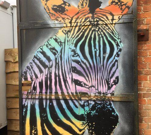Bristol Zoo Reopens Coronavirus